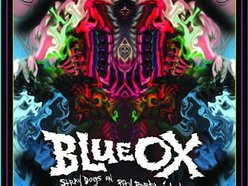 Image for BLUE OX