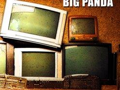 Image for Big panda