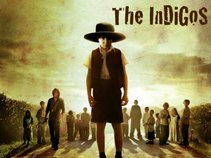 The InDiGoS