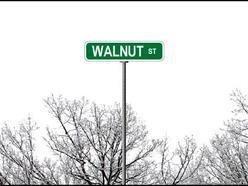 Walnut Street