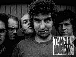 Tangled Horns