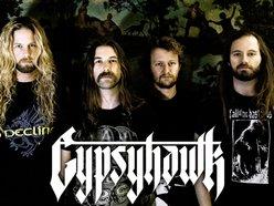 Image for Gypsyhawk