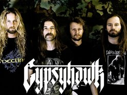 Image for Gypsyhawk