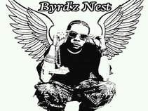 Byrd'z Nest Productions