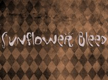 Sunflower Bleed