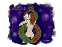 ShepherdPi