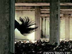 Image for Dirty Bird 13