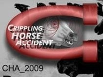 Crippling Horse Accident