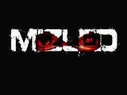 Image for MiZlEd