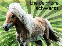 Image for The Delmore Schwartz
