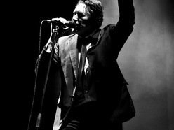 Image for Bryan Ferry