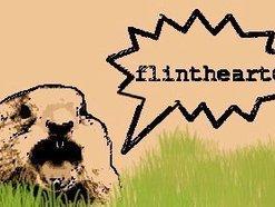 Image for Flintheart