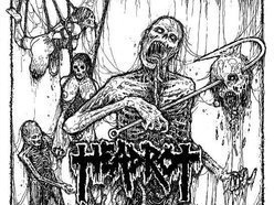 Image for HEADROT