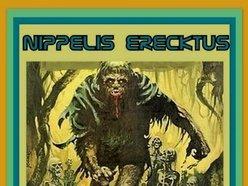 Image for Nippelis Erecktus