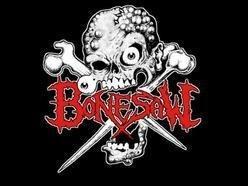 Image for Bonesaw