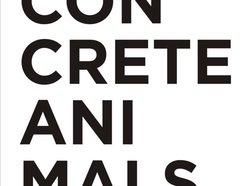 Image for Concrete Animals