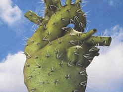 Image for Heavy Nopal