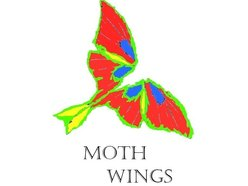 Image for Moth Wings