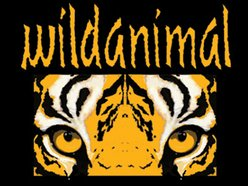Image for Wild Animal