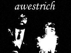 Image for Awestrich