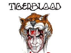 Image for Tiger Blood