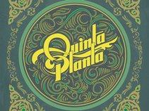 Quinta Planta