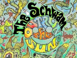 Image for The Schwam
