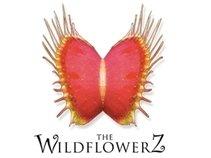 Wildflowerz 2