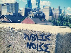 Image for Public Noise