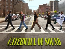 Image for Caterwaul Of Sound