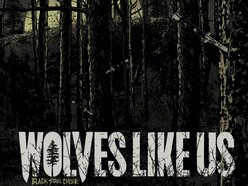Image for Wolves Like Us