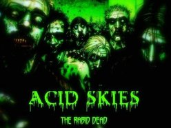 Image for Acid Skies