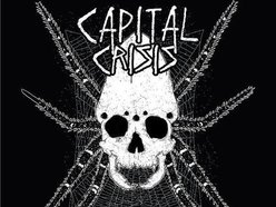 Image for Capital Crisis