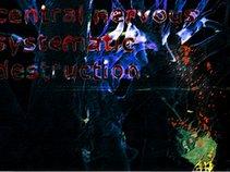 Central Nervous Systematic Destruction