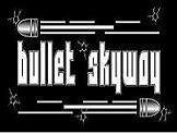 Bullet Skyway