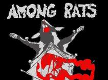 Among Rats