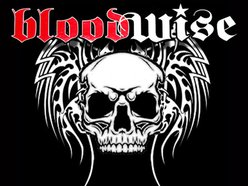 Image for Bloodwise