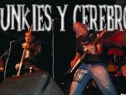 Image for Punkies y Cerebro