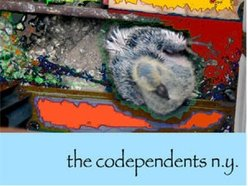 The Codependents N.Y.