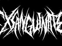 Exsanguinate