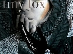 Image for Tiny Fox