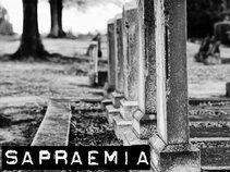Sapraemia
