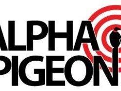 Image for Alpha Pigeon
