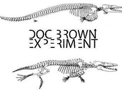 Image for Doc Brown Experiment
