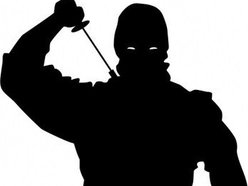 Image for shadow.ninja