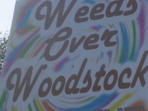 Weeds(over woodstock)