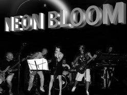 Image for Neon Bloom