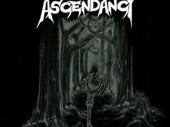 Image for Ascendancy