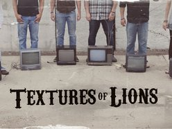 Image for Textures Of Lions