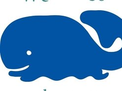 The Perfectly Adequate Whales